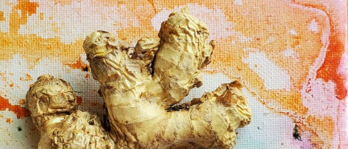 Ginger Root Coming Up Rainbows
